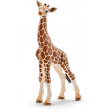 Bébé Girafe - Figurine Animal - Schleich - Trésors d'Enfance à Rodez