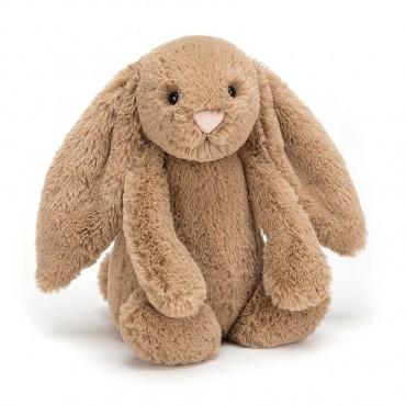 Peluche Lapin 18 cm - Bashful Biscuit Bunny Small - Jellycat - Trésors d'Enfance à Rodez